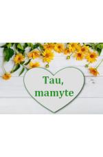 TAU, MAMYTE